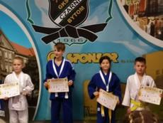 Galeria judo