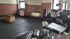 Galeria siłownia